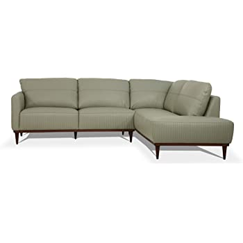 Amazon.com: ACME Tampa Sectional Sofa - - Airy Green Leather .