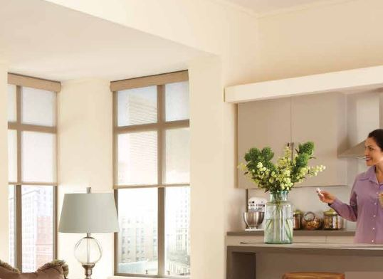 Automatic Blinds or Motorized Shades Make Windows Smart and .