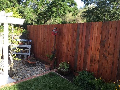 Backyard Fen