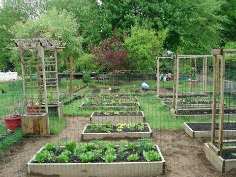 How My Dad Transformed My Mom's Garden | Backyard Organic .