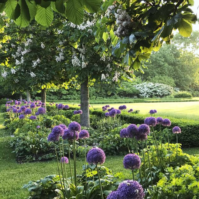 Landscaping Ideas - Landscape Designs for Front Yards & Backyar