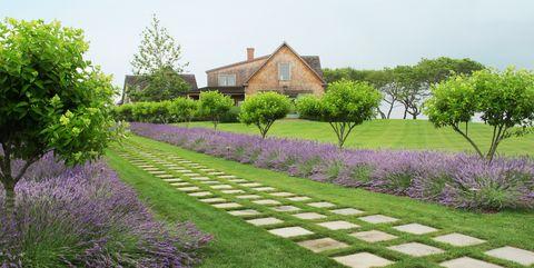 55 Beautiful Landscaping Ideas - Best Backyard Landscape Design .