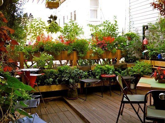 No Yard? No Problem: The Best Balcony, Rooftop and Patio Gardens .