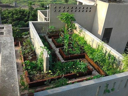 Rooftop Gardening India 16 Best Rooftop Garden India Images On .