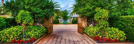 Pinellas County Florida - Florida Botanical Gardens - Our Garde