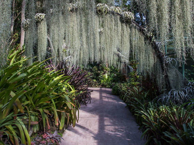 10 Best Botanical Gardens In The Wor