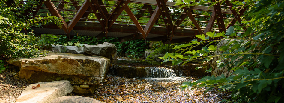 Visiting the Garden | Public | Clemson University, South Caroli