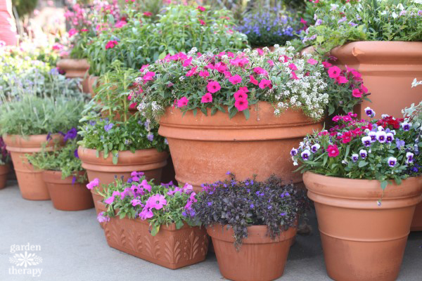 Your Garden … with Kate Russell: Container gardening is helpful .