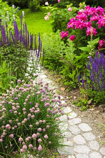 How to Design an Old-Fashioned Cottage Garden | Gardener's Pa