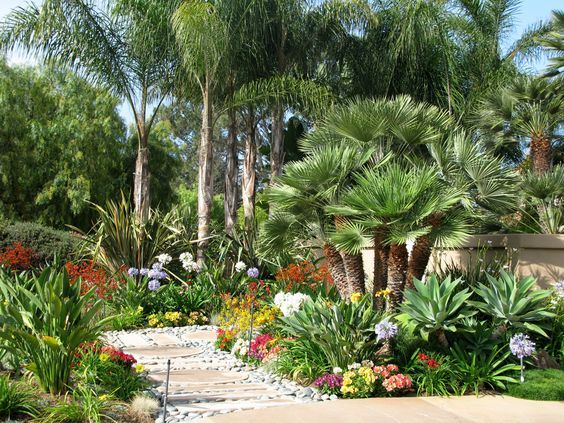 Lush desert-tropical landscaping with lots of color and variation .