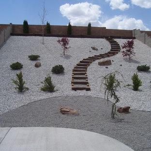 75 Beautiful Desert Backyard Landscaping Pictures & Ideas .