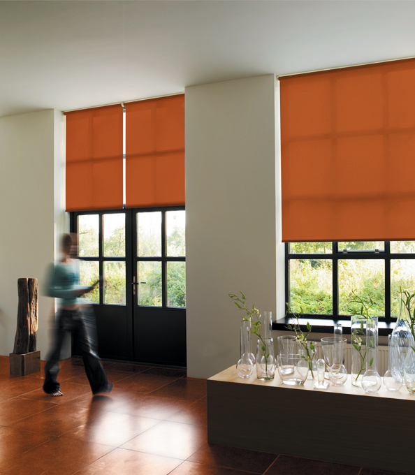 Design Ideas: Door Window Treatments - The Shade Sto