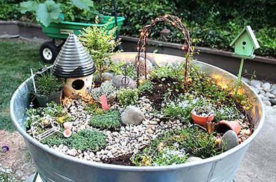 Fairy gardens, succulents class set | Area Events | messagemedia.