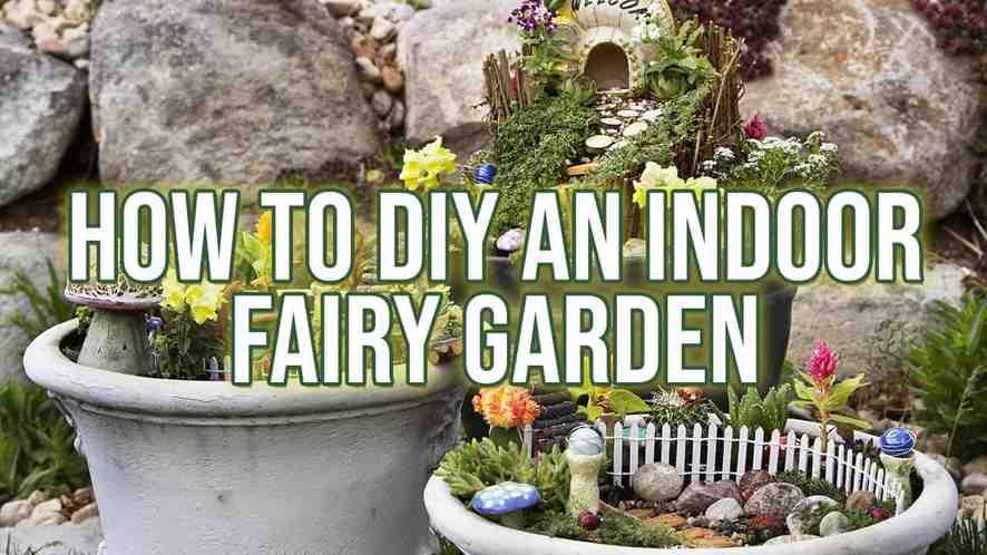How to DIY an Indoor Fairy Garden - Indoor Gardeni