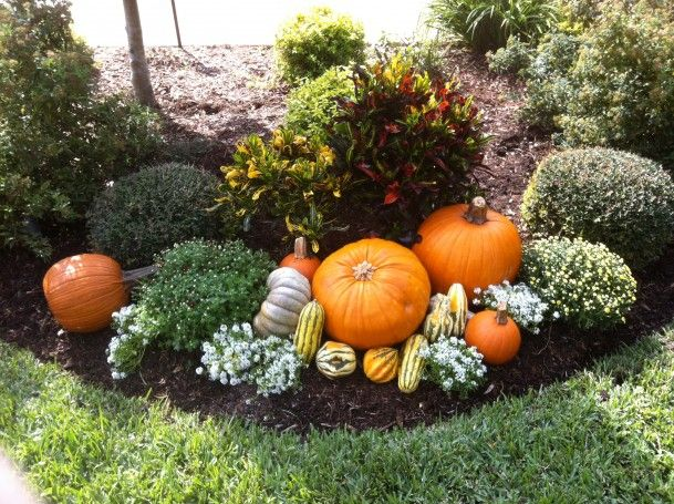 fall flower bed ideas - Google Search | Fall yard decor, Fall .