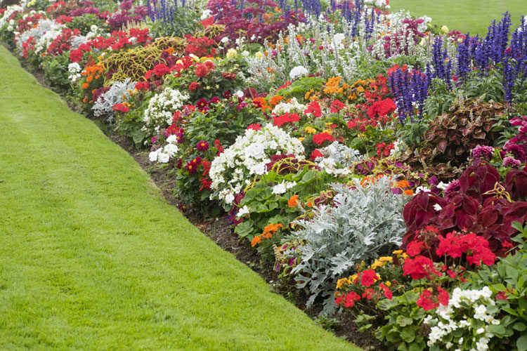 35 Best Flower Bed Ideas: Beautiful Flower Garden Designs (2020 Guid