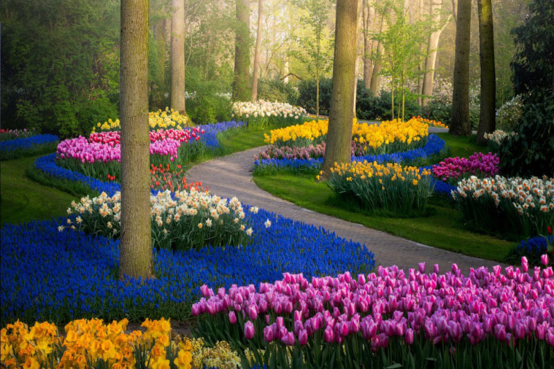 The Most Beautiful Flower Garden in the World, Without People .