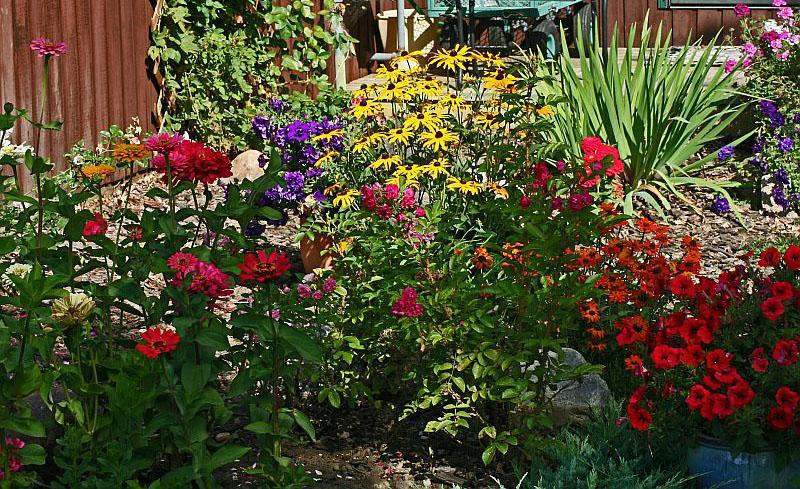 Connecticut Garden Journal: Cutting Gardens | Connecticut Public Rad