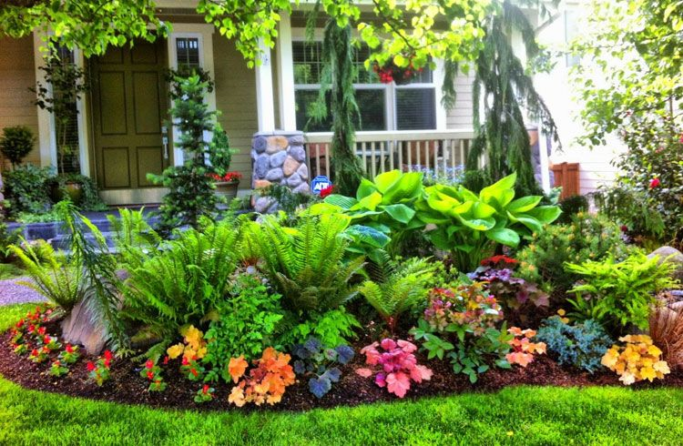 Home Ideas Review in 2020 | Shade garden design, Front yard .