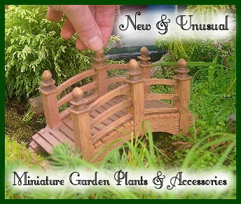 Miniature Gardening 105: Sizing up Your Miniature Accessories .