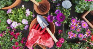 20 Best Garden Accessories - Cute Gardening Tools & Suppli