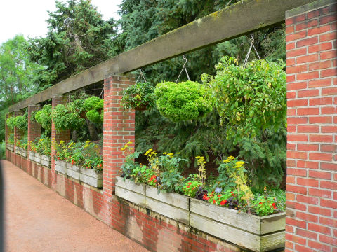 Raised bed gardens | UMN Extensi