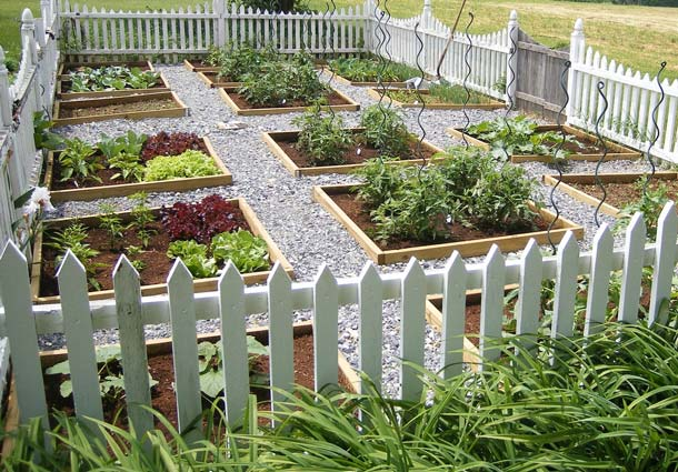 The Pros and Cons of Raised Beds • Pre