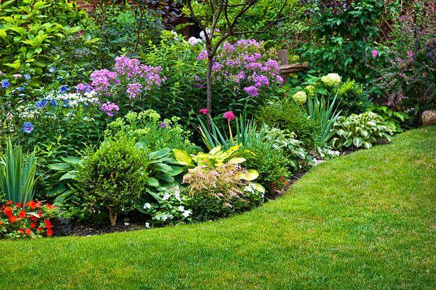 Shade Garden Border | Shade Garden Plans | Smart Design Tips And .