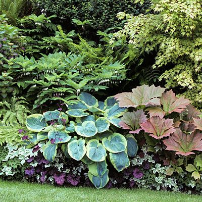 Gorgeous Garden Border Design Ideas for Any Yard in the West .