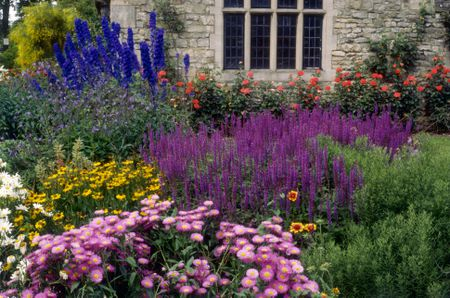 Summer Flower Garden Border Ide
