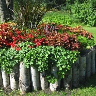 On the Edge: 16 Garden Borders You Can Make | Garden edging, Wood .