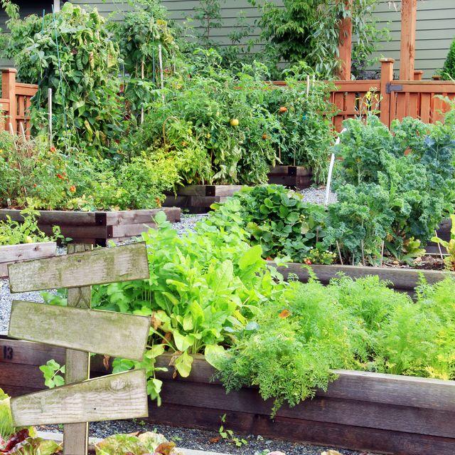 20 Free Garden Design Ideas and Plans - Best Garden Layou