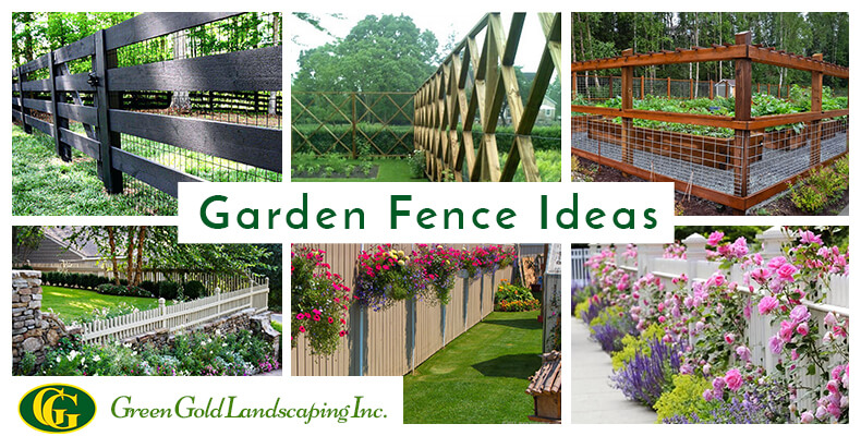 10 Beautiful and Cheap Garden Fence Ideas for Privacy - Green Gold .