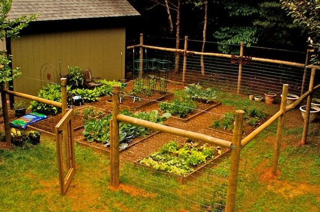 Know your options about garden fence kits to select the one that .