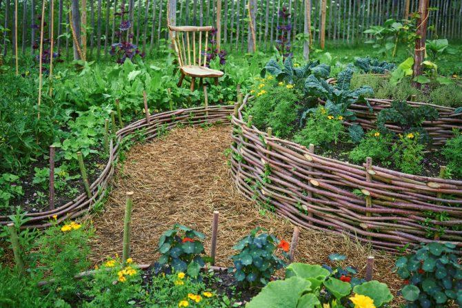 Garden Fence Ideas for Every Style and Budget - Chowhou
