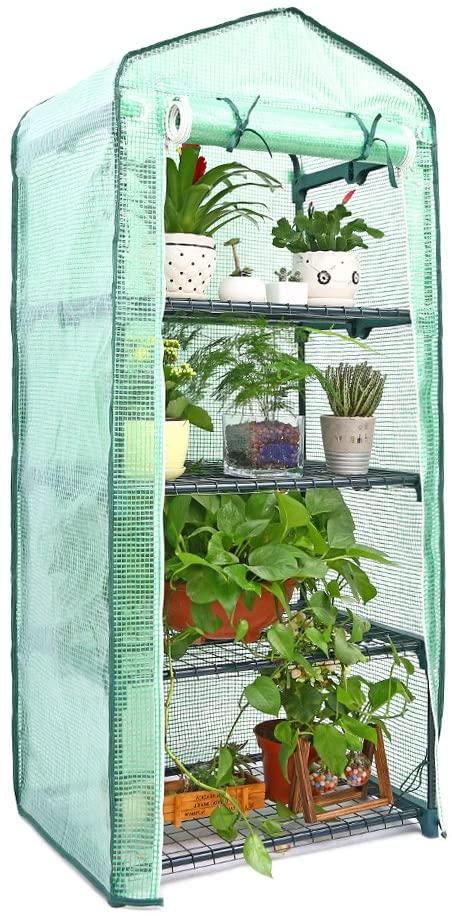 Amazon.com : Ohuhu Mini Greenhouse, Small Plant Greenhouses, 4 .