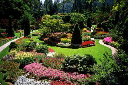 Designing a Garden With Landscape Design Principl