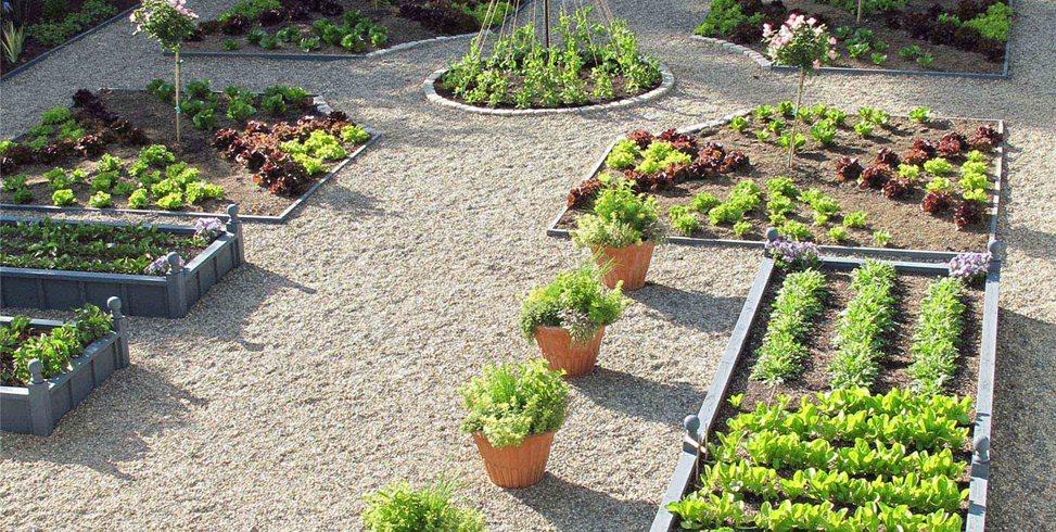 Vegetable Garden Design Ideas - Landscaping Netwo