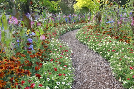 Beautiful and Functional Flower Garden Pat