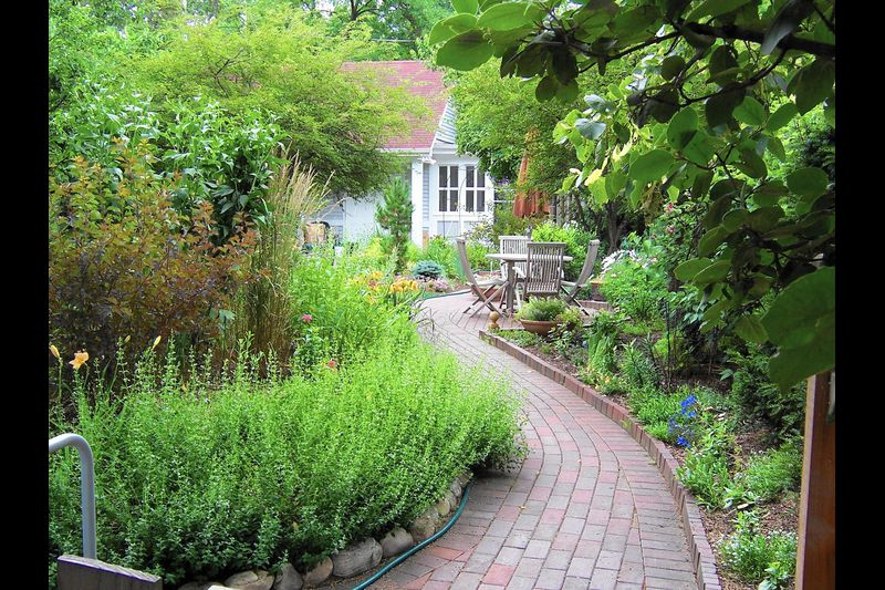 Stepping into the pleasures of a well-designed garden path .