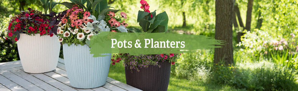 Garden Pots, Planters and Boxes - Free Shipping | Gardeners.c