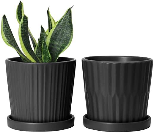 Amazon.com: Greenaholics Medium Plant Pots - 6 Inch Black Cylinder .