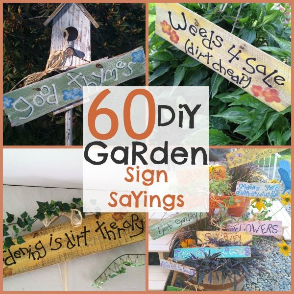 DIY Garden Signs and Garden Sign Sayings - | Funny garden signs .