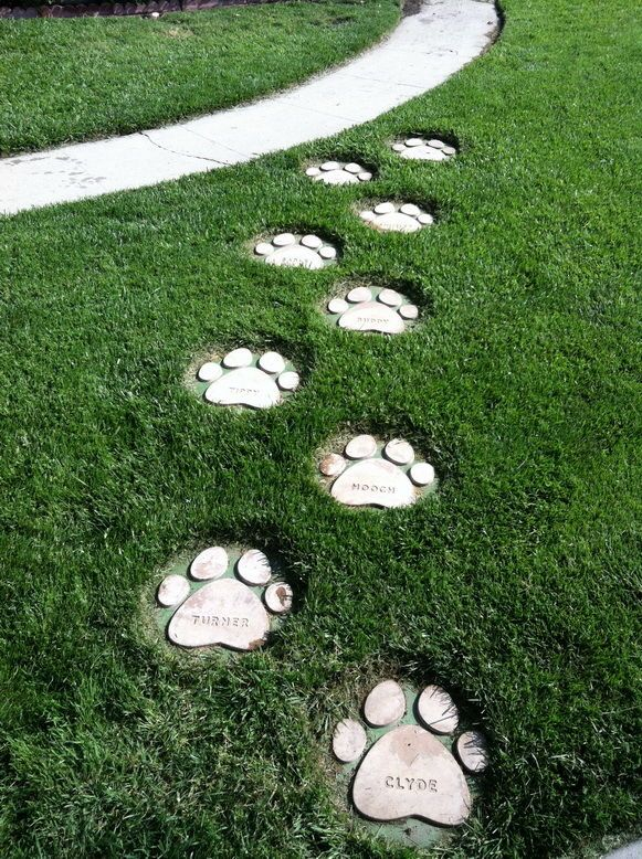 Dog Paws Stepping Stones | Garden stepping stones, Stepping stones .