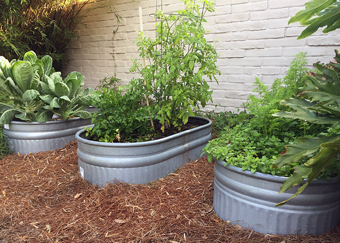 Easy Gardening With Garden Troughs! - Gill Garden Center + .