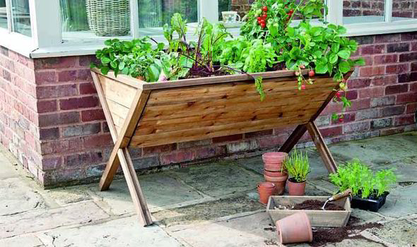 Gardman Raised Growing Trough Planter | Express.co.
