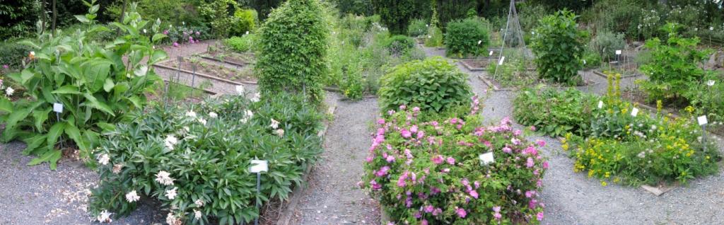 UW Medicinal Herb Garden Home Pa
