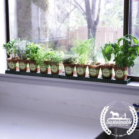 Window Herb Garden Kit – Sustainable Seed Compa
