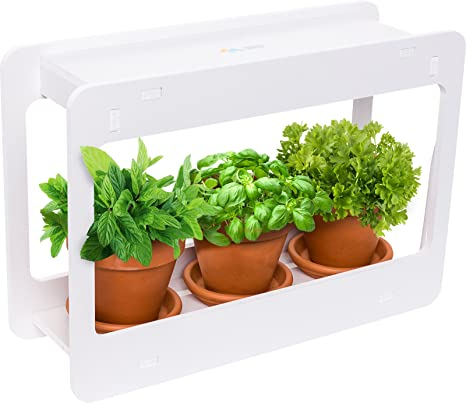 Amazon.com : Mindful Design LED Indoor Herb Garden - at Home Mini .