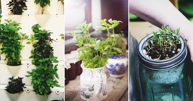 46 Indoor Herb Garden Ideas That Will Inspire You to Start Planti